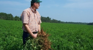 Peanut farmer in field