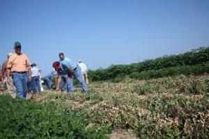 farmers walking in field